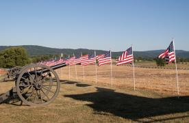 Flags and cannon